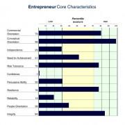 Entrepreneur Profile